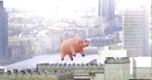 Dlaczego nad Warszawą lata świnia? Już wiemy!