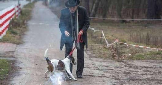 """Janusz Korwin-Mikke i kolejna wypowiedź z cyklu """"najlepsze momenty"""" i """"the best of""""? Oto jego poglądy na temat zwierząt. Sondaże i wyniki wyborcze ucierpią?"""