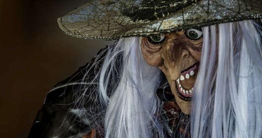 Polityk PiS poluje na czarownice