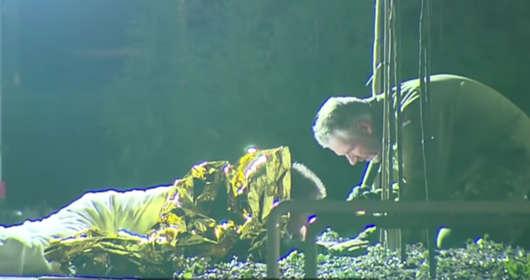 Bohater z Holandii. Granat z czasów II wojny światowej zakrył ciałem, by siła wybuchu nie zrobiła nikomu krzywdy. Okazało się, że był to niewypał wojenny.