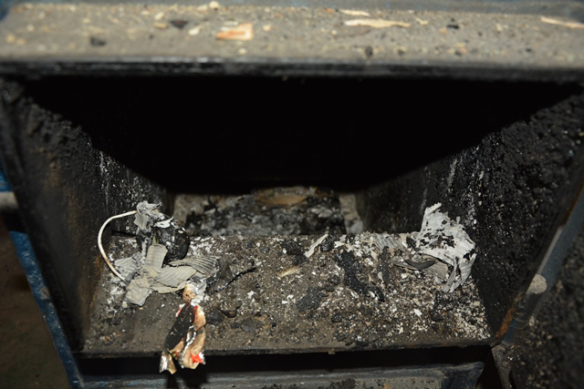 24-latek spalił psa (1)