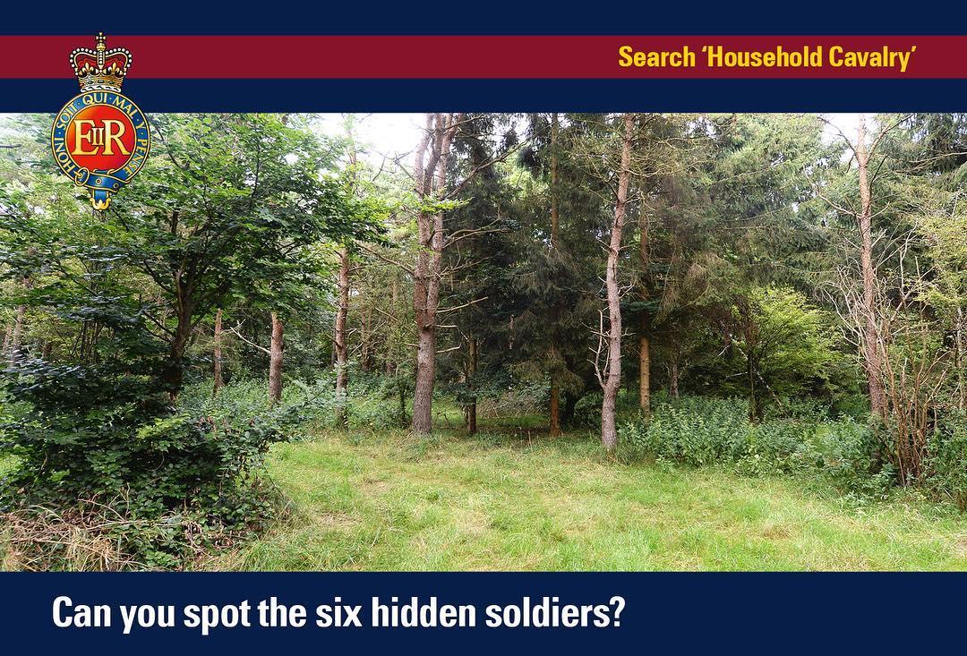 Ilu żołnierzy jest na zdjęciu? Ta zagadka podbija sieć