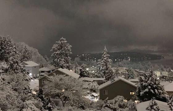 Zima w USa w tym roku to kolejne rekordy jeśli chodzi o niskie temperatury i opady śniegu. Chicago i Seattle nawiedzają śnieżycie, prognoza pogody przeraża